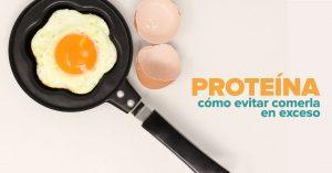 Lee más sobre el artículo La proteína no es mala… si se absorbe.