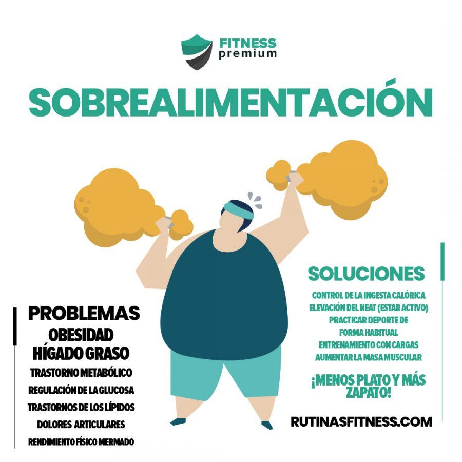 metabolismo y sobrealimentación