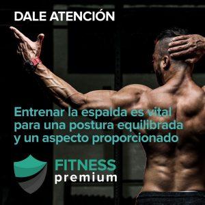 Lee más sobre el artículo Rutina de espalda para ganar músculo y obtener una forma de V
